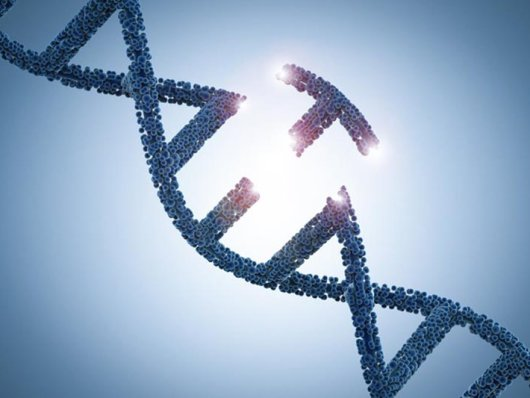 Silenciosamente, China confirma o nascimento do terceiro bebê com genes editados