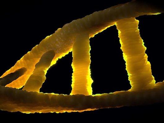 Cientistas criam um material artificial que tem metabolismo e pode se autorreproduzir
