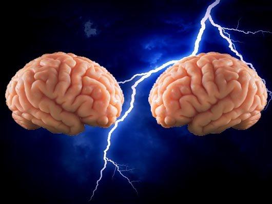 Você sabe o que acontece no cérebro quando você discorda?